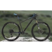 Rent a Bike MTB Carbon 1 Day