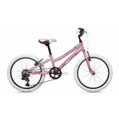 Kid Bike Coluer Magic 201